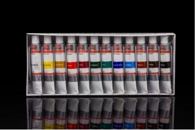 Akrilinių dažų rinkinys 12 sp,